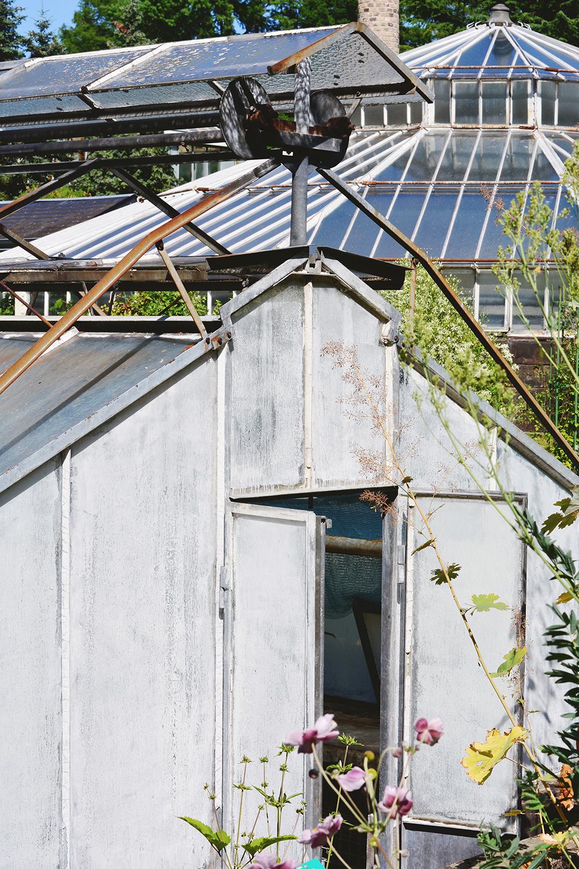 Le jardin botanique de strasbourg errances - Jardin botanique de strasbourg ...