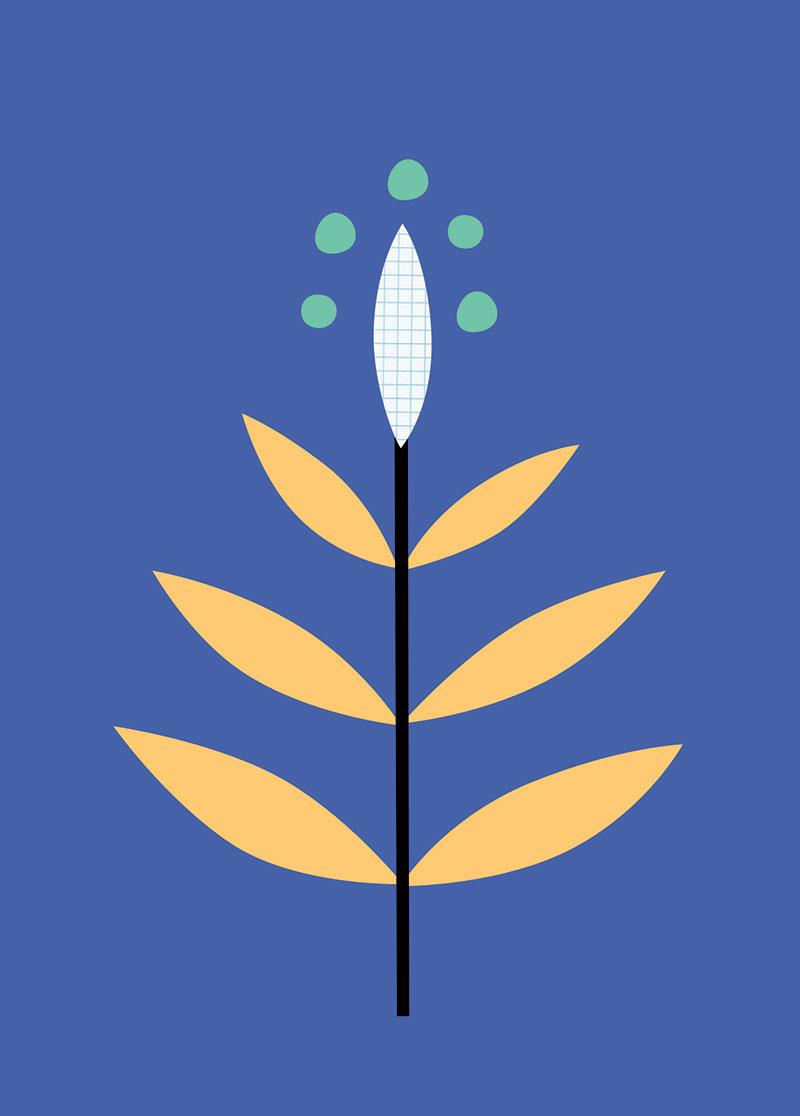 plantes2c