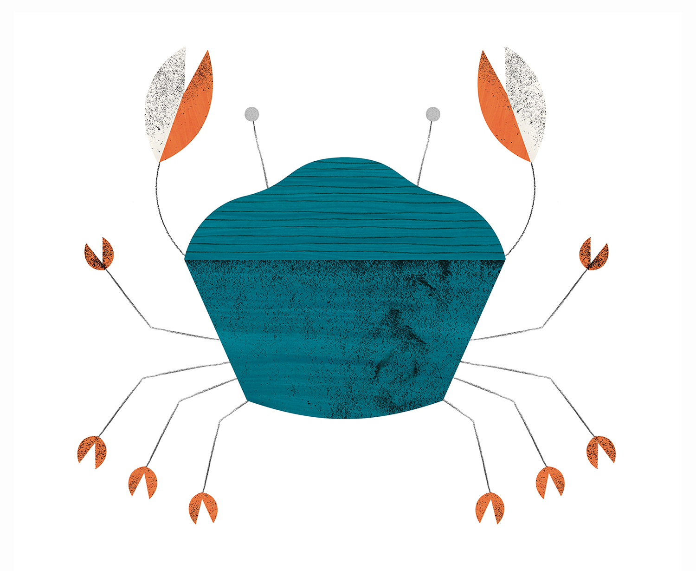 crabe4
