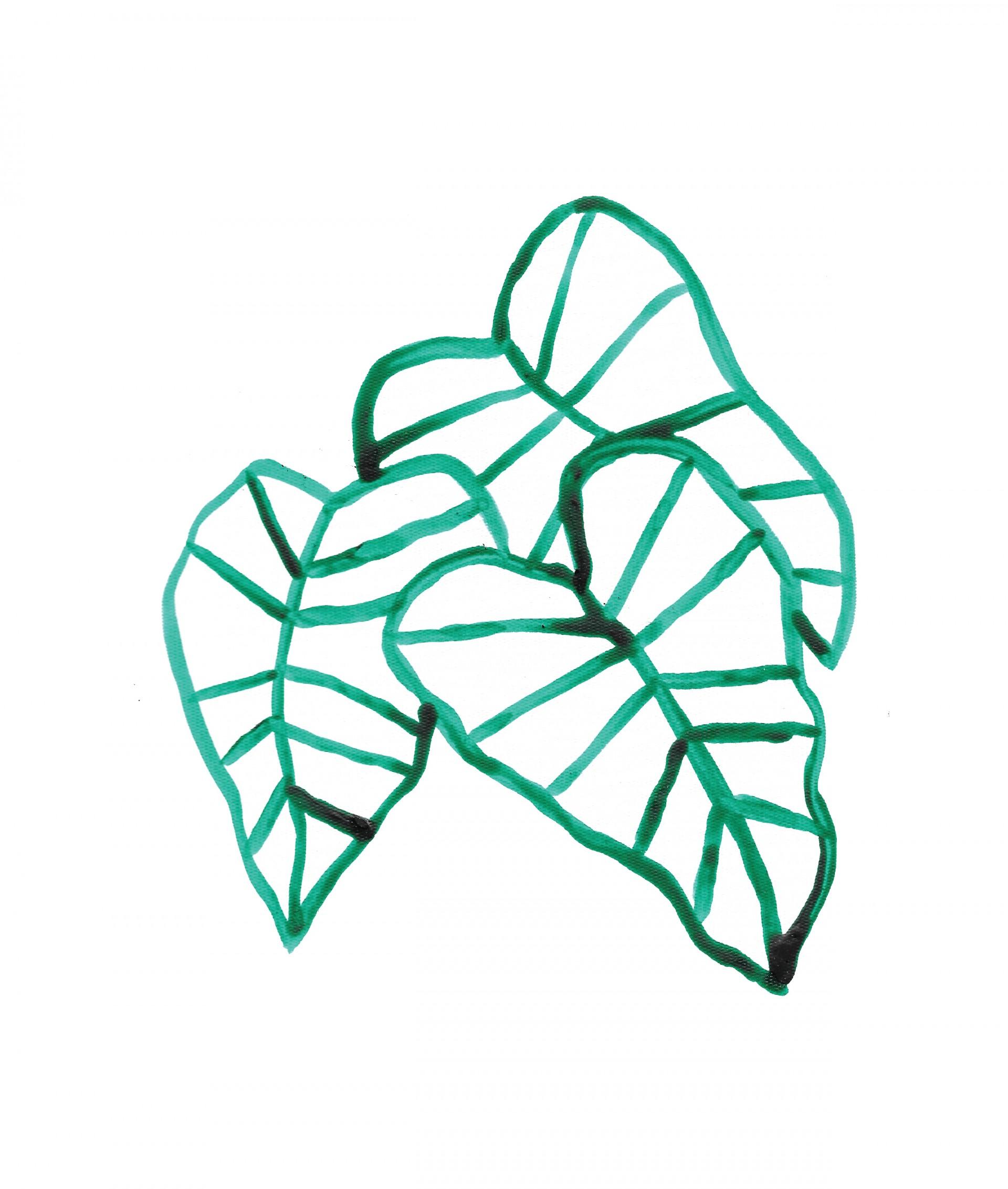 Atelier Noémie Cédille Plants